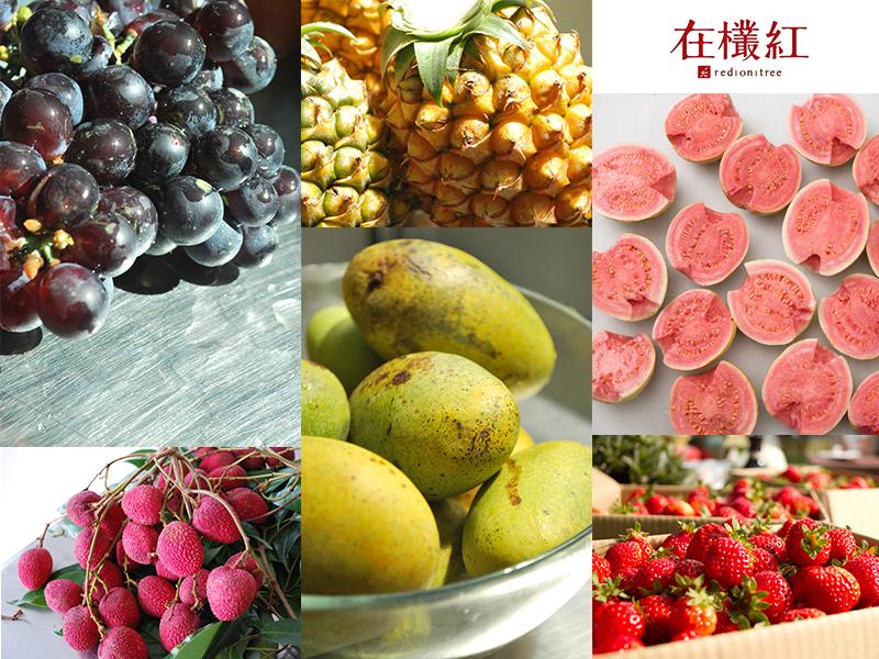 水果大集合